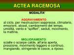 actea racemosa17