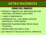 actea racemosa18