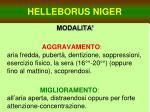 helleborus niger14