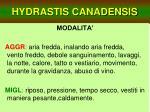 hydrastis canadensis32