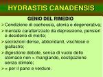 hydrastis canadensis33
