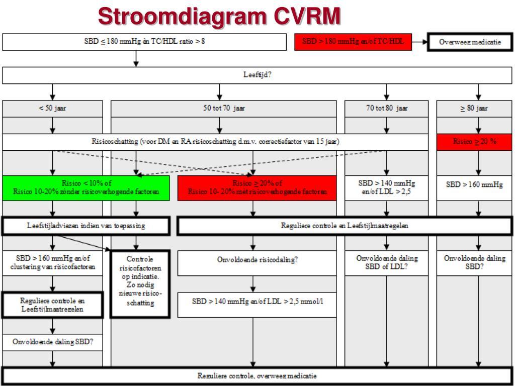 Stroomdiagram CVRM