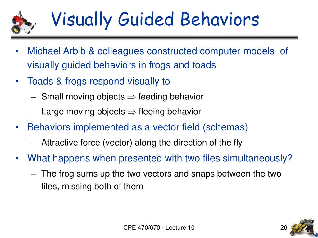 Visually Guided Behaviors