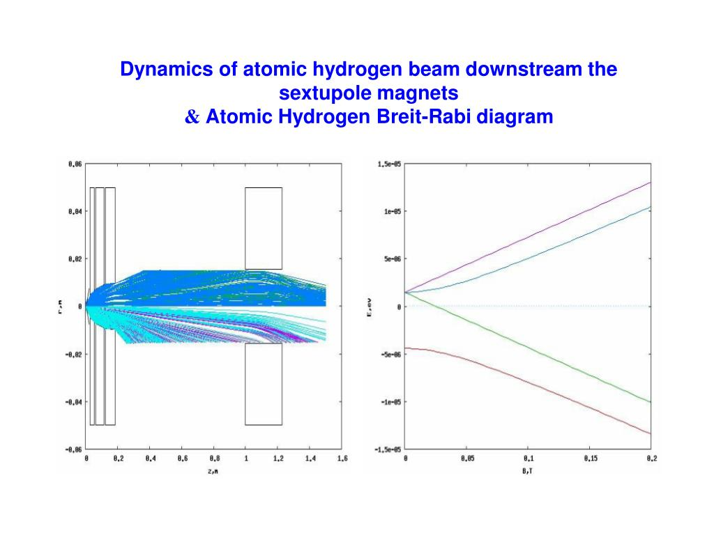 Dynamics of atomic hydrogen beam downstream the sextupole magnets