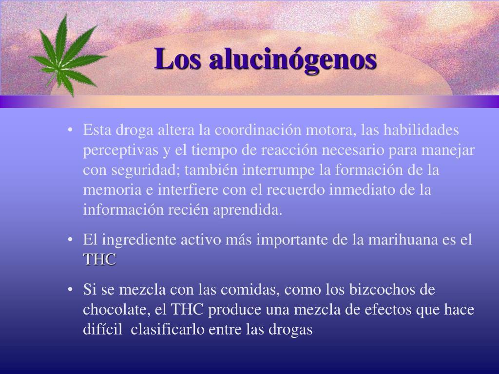Los alucinógenos