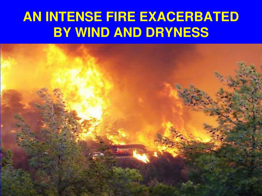 AN INTENSE FIRE EXACERBATED BY WIND AND DRYNESS