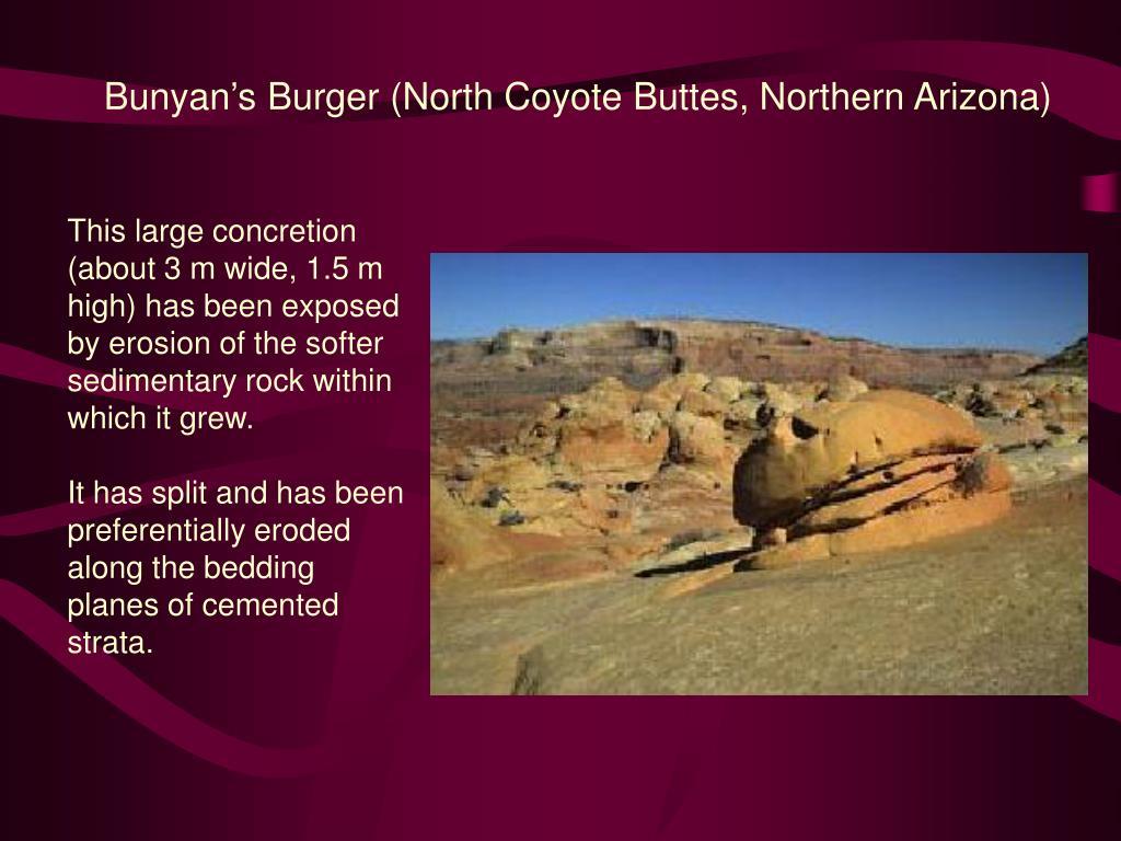 Bunyan's Burger (North Coyote Buttes, Northern Arizona)