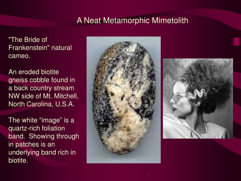 A Neat Metamorphic Mimetolith