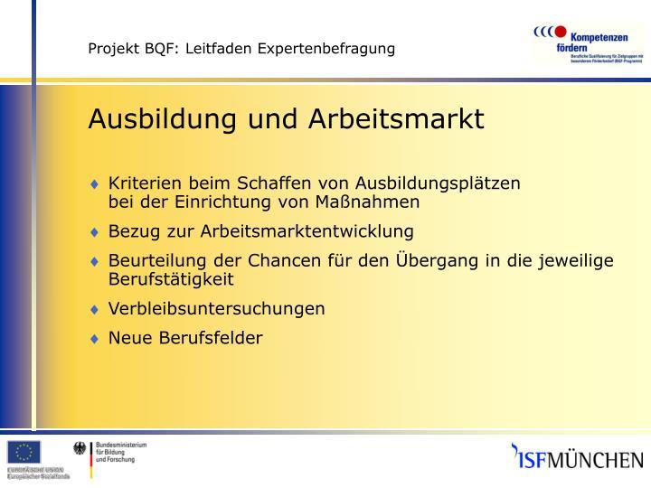 Projekt bqf leitfaden expertenbefragung2