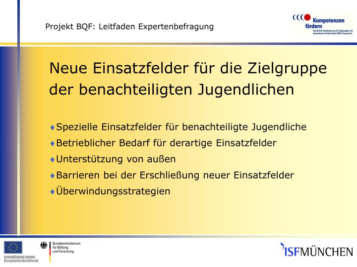 Projekt bqf leitfaden expertenbefragung3