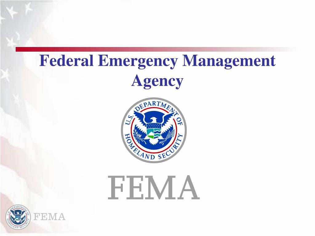 federal emergency management agency l.