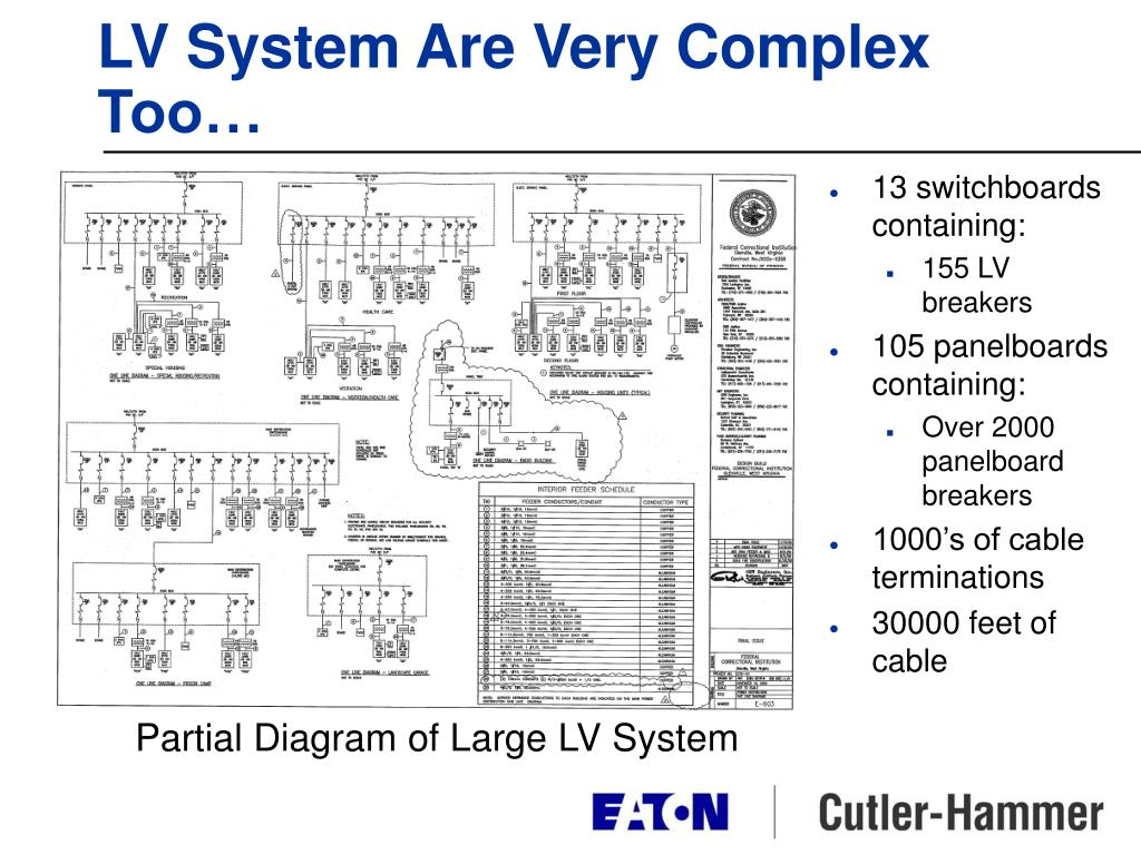 LV System Are Very Complex