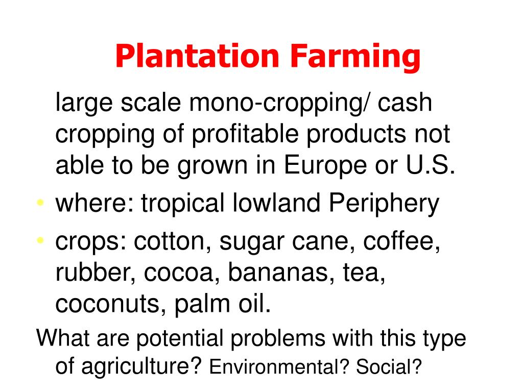 large scale mono-cropping/ cash cropping of profitable products not able to be grown in Europe or U.S.