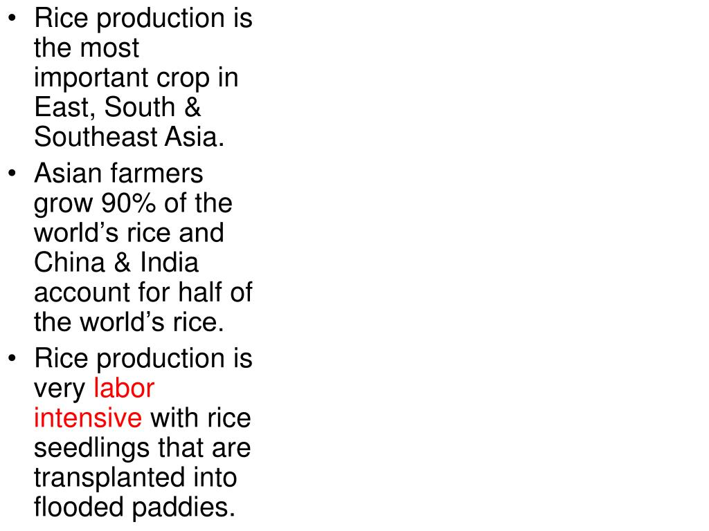 Rice production is   the most important crop in East, South & Southeast Asia.