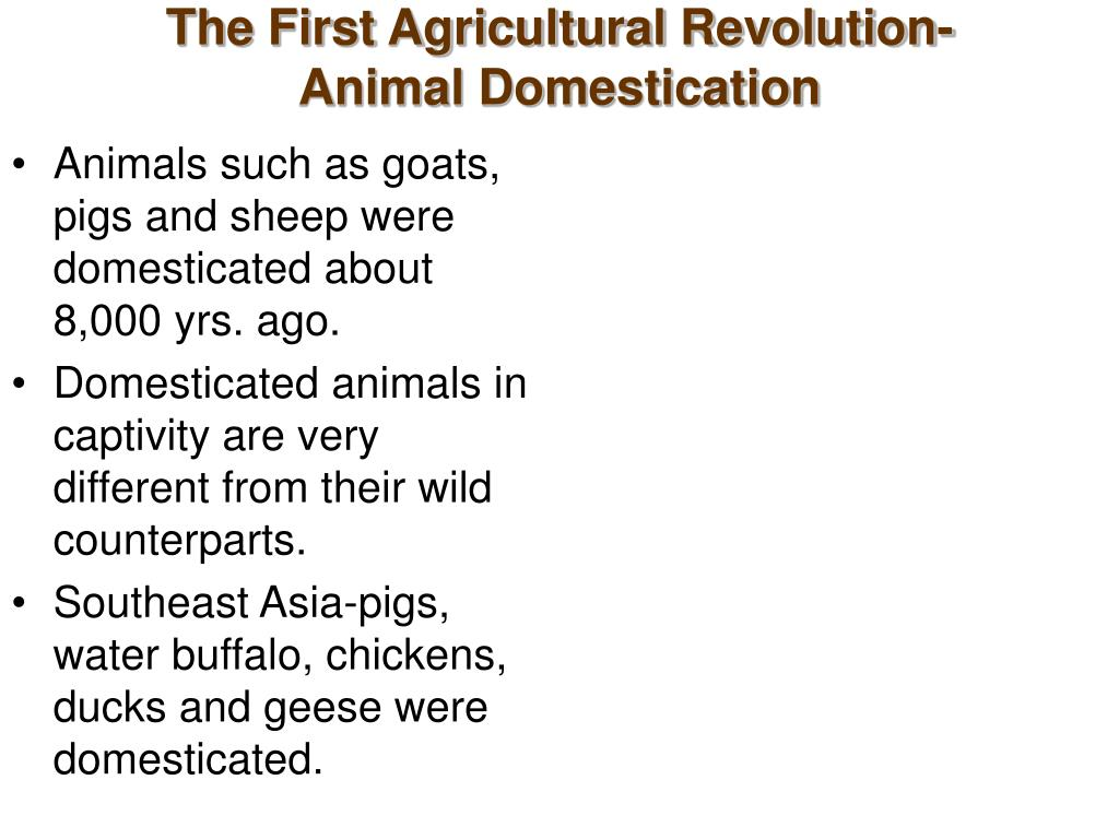The First Agricultural Revolution-Animal Domestication