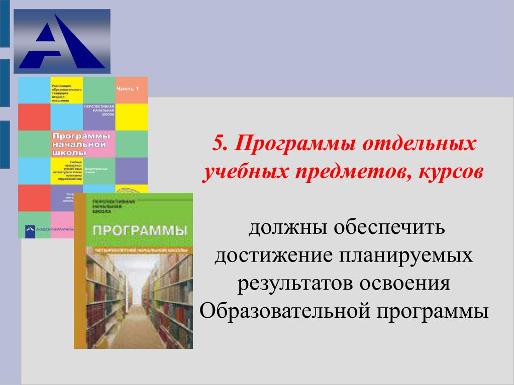 5. Программы отдельных учебных предметов, курсов