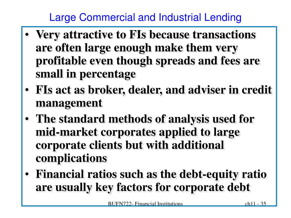 Large Commercial and Industrial Lending