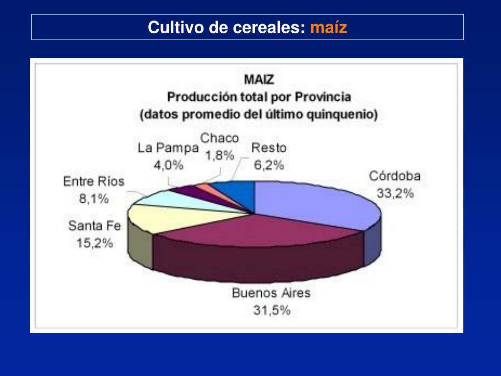 Cultivo de cereales:
