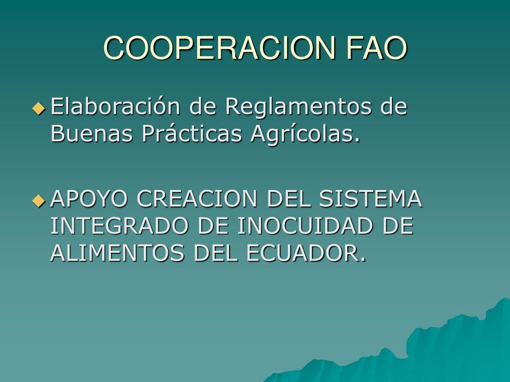 COOPERACION FAO