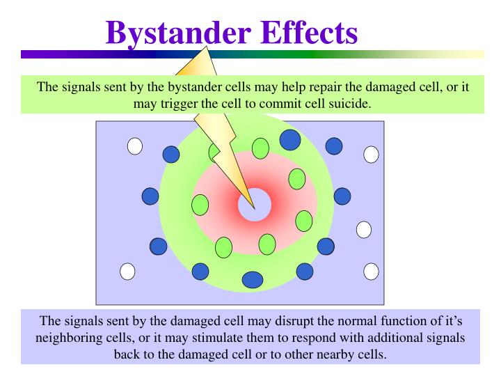Bystander effects2