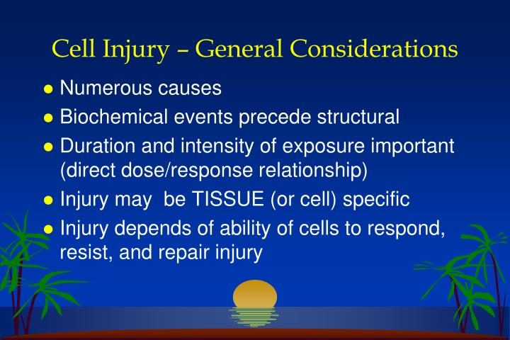 Cell Injury – General Considerations