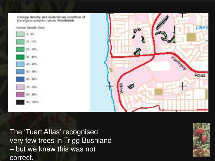 The 'Tuart Atlas' recognised very few trees in Trigg Bushland – but we knew this was not corre...