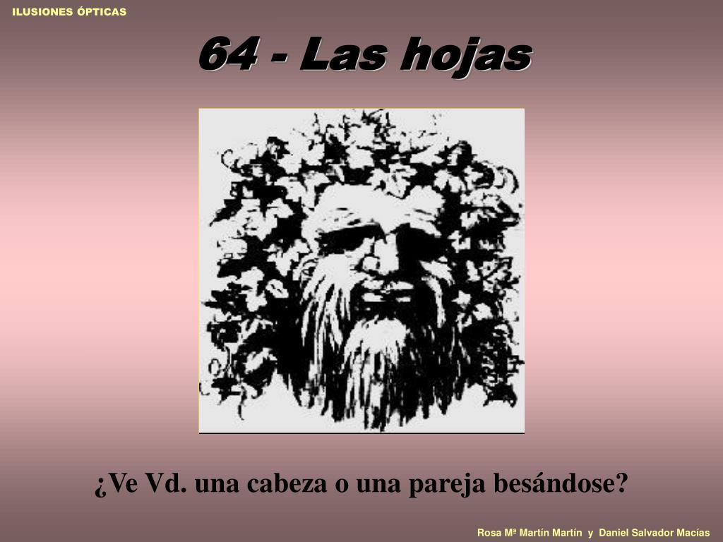 64 - Las hojas
