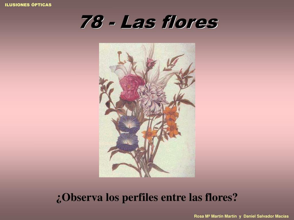 78 - Las flores