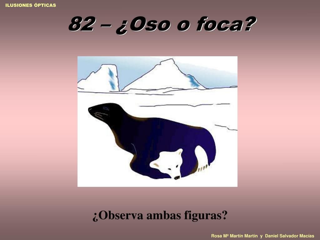 82 – ¿Oso o foca?