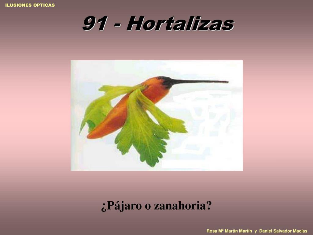 91 - Hortalizas
