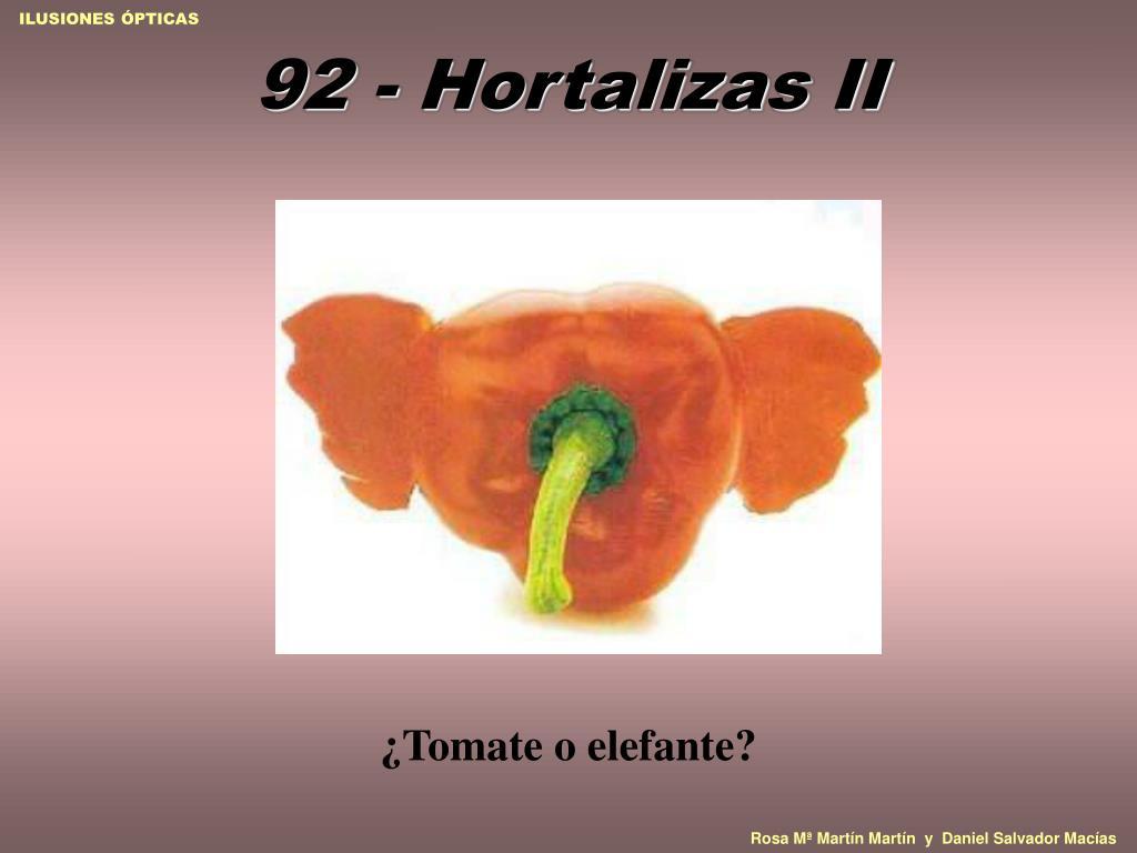 92 - Hortalizas II
