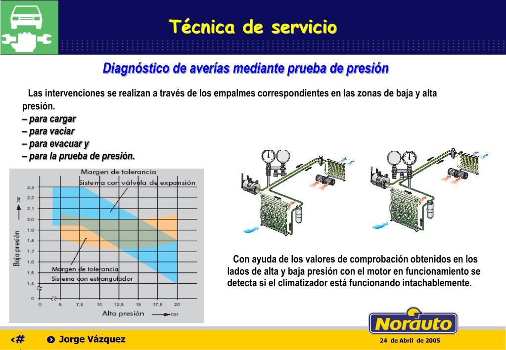 Técnica de servicio