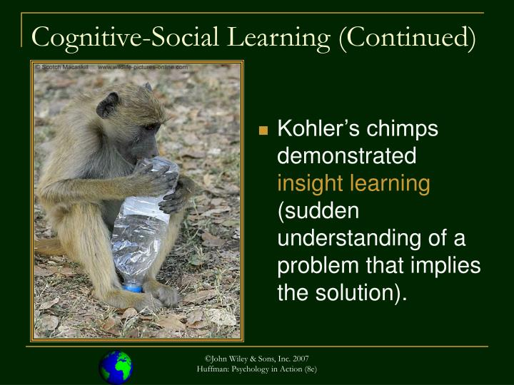 Cognitive social learning continued