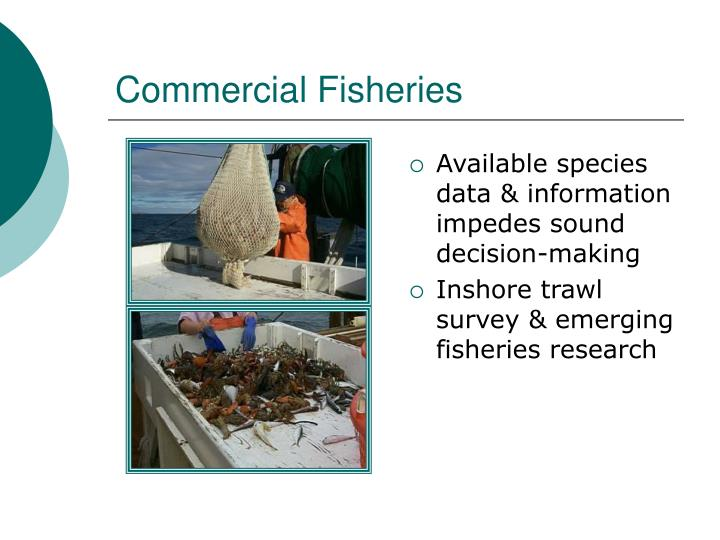 Commercial Fisheries