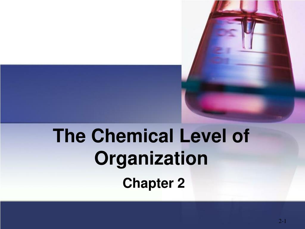 the chemical level of organization l.