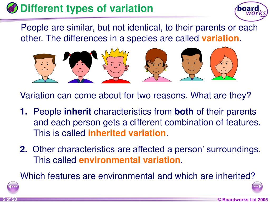 Different types of variation