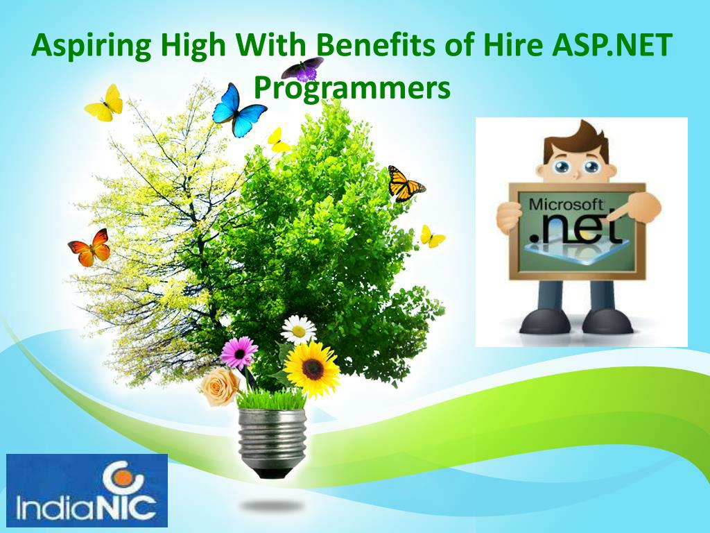 Aspiring High With Benefits of Hire ASP.NET Programmers