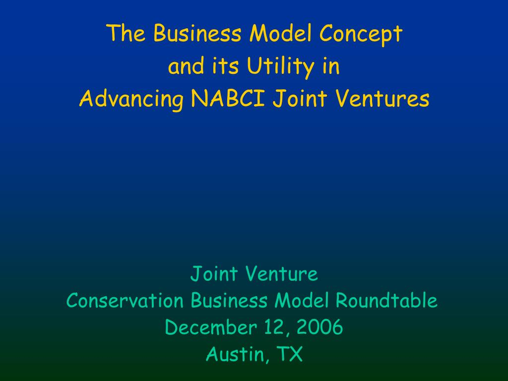 The Business Model Concept