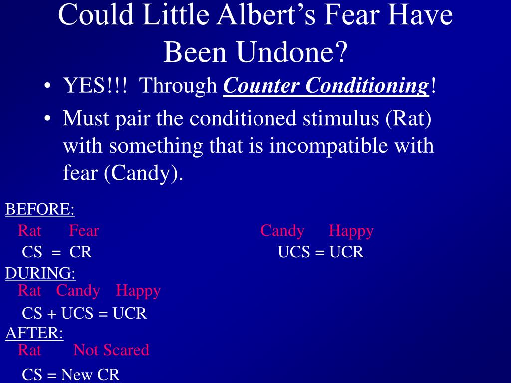 Could Little Albert's Fear Have Been Undone?