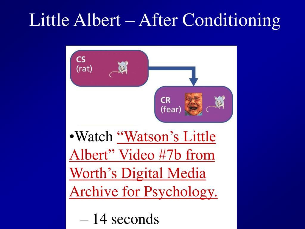 Little Albert – After Conditioning
