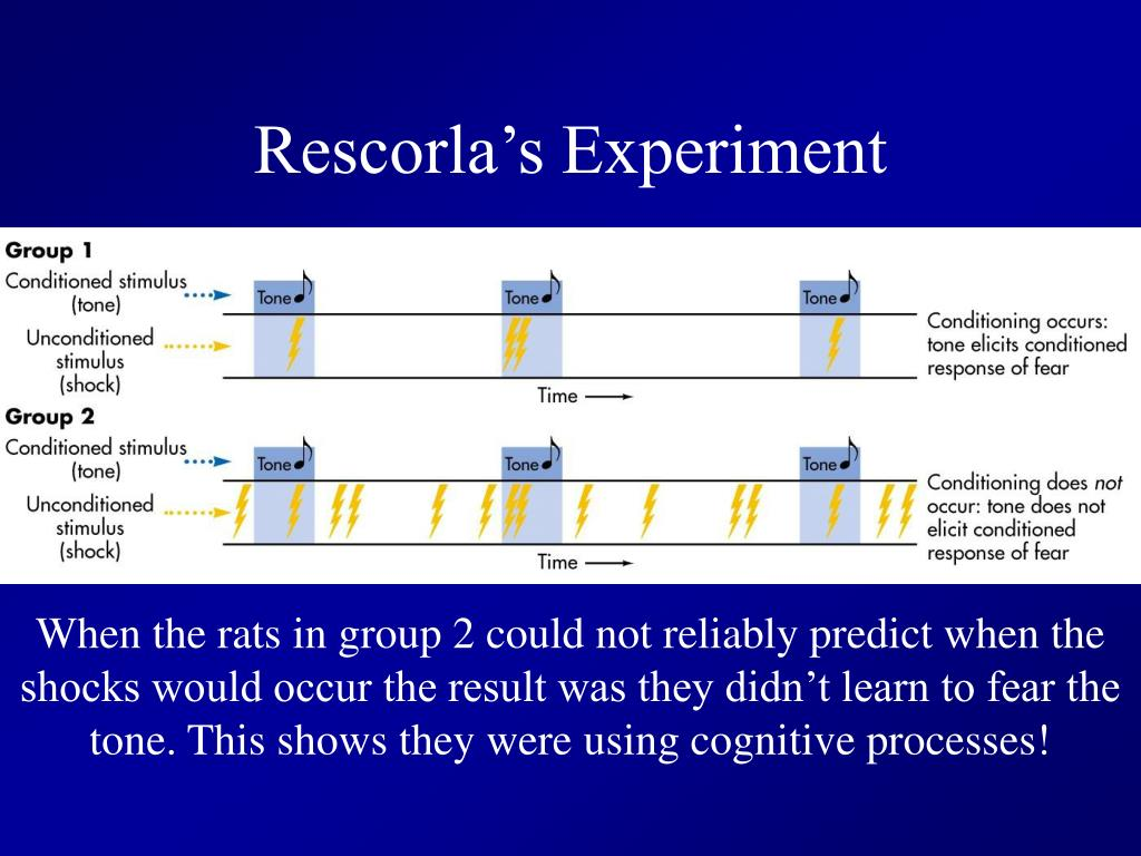 Rescorla's Experiment