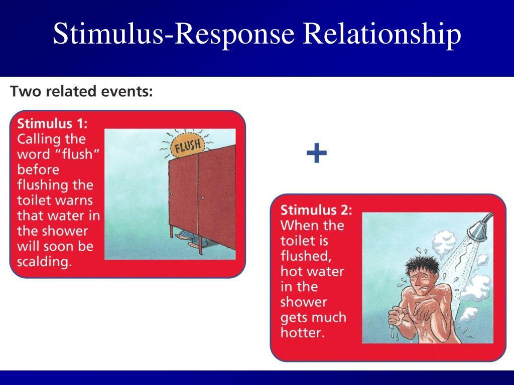 Stimulus-Response Relationship