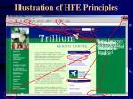 illustration of hfe principles