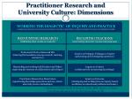 practitioner research and university culture dimensions