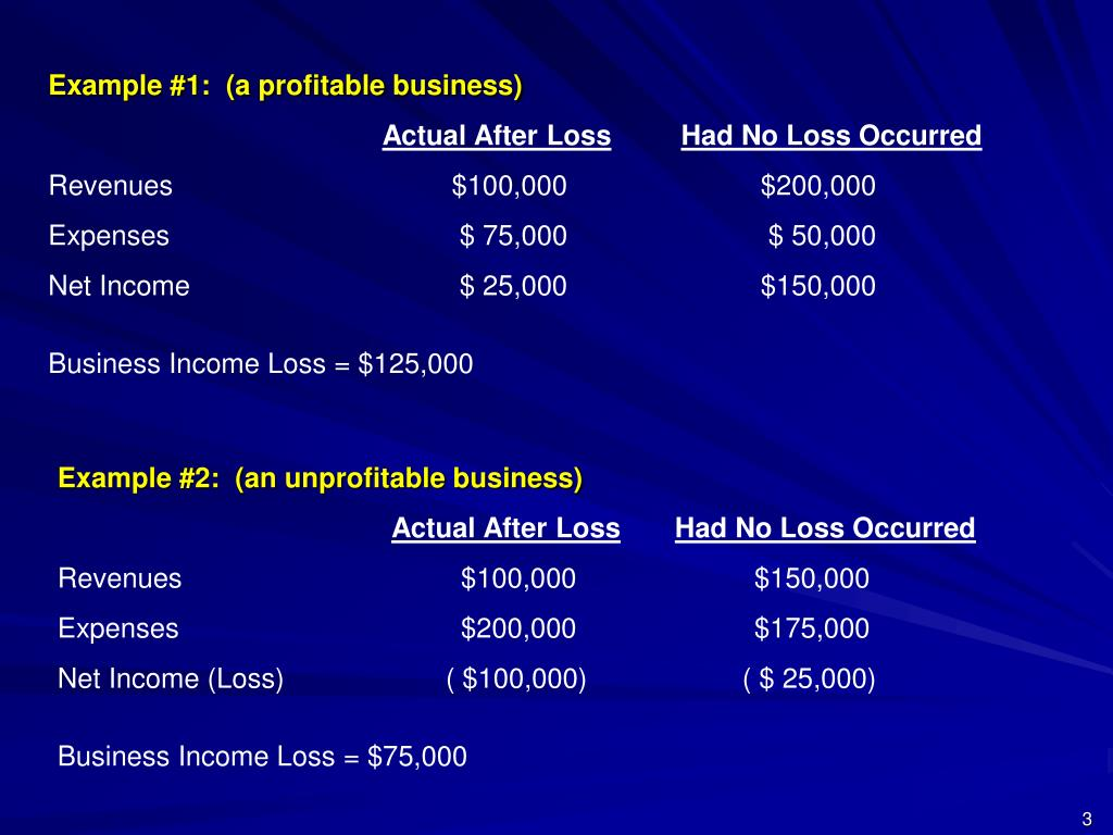 Example #1:  (a profitable business)