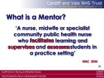 what is a mentor