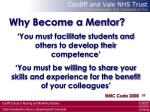 why become a mentor