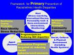 framework for primary prevention of racial ethnic health disparities