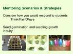 mentoring scenarios strategies