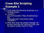 cross site scripting example 1